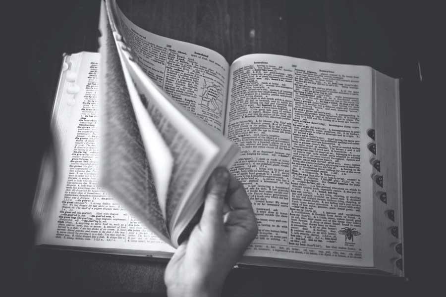 dictionary thesaurus